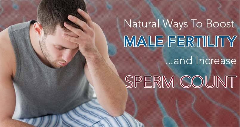 Male Fertility and Sperm Count