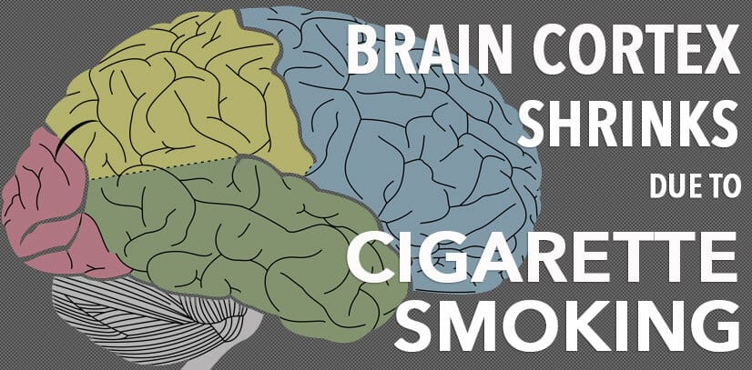 Brain Shrinkage Due To Smoking